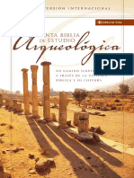 Santa Biblia de Estudio Arqueológica NVI (TITO)