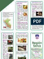 Triptico Region Selva