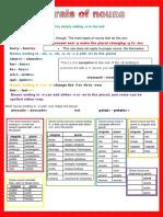 Grammar Poster Plurals of Nouns Classroom Posters Grammar Guides 108576 (1)