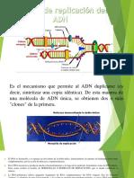 Biologia-Molecular.pptx