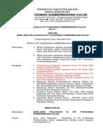 1.1.1 EP 1 SK Ttg Jenis2 Pelayanan - Copy