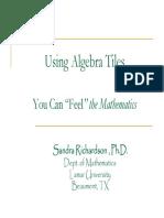 Richardson_2008.pdf