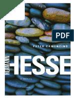 Peter Camenzind (Hermann Hesse)