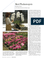 6 - Growing Best Phals Part 1.pdf