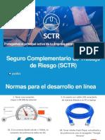 Seguro Complementario de Trabajo de Riesgo (SCTR)