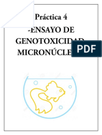Micronucleos