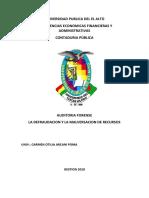 MONOGRAFIA AUDITORIA DE FORENCE.docx
