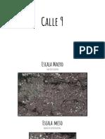 Entrega Final Arquitectura Paisajística UCR