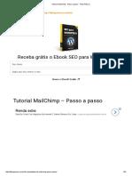Tutorial MailChimp - Passo a Passo - Fábio Pessoa