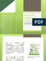 Categorías de Negocios Verdes y Sus Criterios