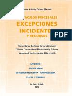 Excepciones e Incidentes Libro
