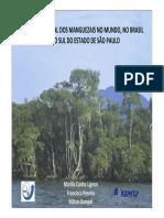 Estudo Das Areas de Manguezais Do Nordeste Do Brasil 2005