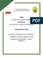 ESPECTROSCOPIA RAMAN-GRUPO N°08-ANALISIS QUIMICO INSTRUMENTAL-IIIC-IS2018