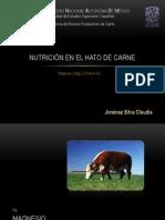 Magnesio y Potasio en la alimentación de bovinos de carne