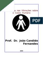 Apostila - Vibrações no Corpo Humano.doc