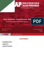 TGC- 2 Elementos Consentimiento. Objeto
