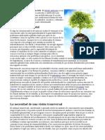 Medio Ambiente en El Siglo XXI