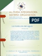 Espinozaleon Rebeca M14S1 Materia Organizada