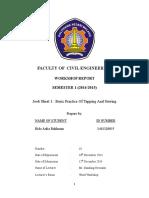 Workshop Hammer Report