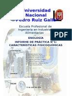 320950917-INFORME-CATA-DE-VINOS-ENOLOGIA-docx.pdf