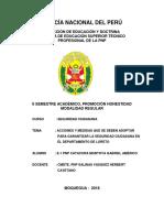 Monografia Seguridad Ciudadana en Loreto - e1 Pnp Catacora Montoya Gabriel Americo