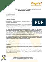 Derecho de Familia. Patria potestad, Tutela y otras instituciones.pdf