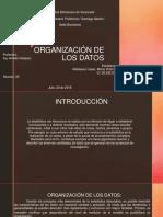 Organización de Los Datos PDF