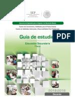 Guia de Estudio 2018-2019 Docente Secundaria-fiisica