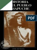BENGOA, José Historia del Pueblo mapuche.pdf