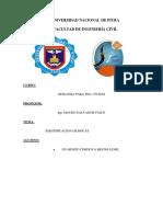 informe geologia n.-1(2)