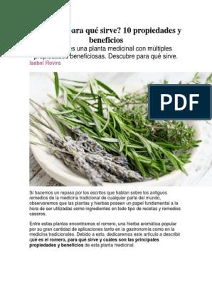 propiedades del romero planta medicinal