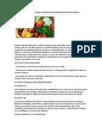 Bacterias Beneficiosas Usadas Como Bio Fertilizantes en Nuestro Huerto