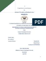 rinkal_cp_cksvim.pdf