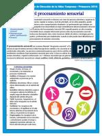 Sensory Processing Bulletin Spanish