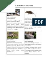 Distribucion de Mamiferos en El Ecuador