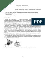 4.HBP-curs 4.doc