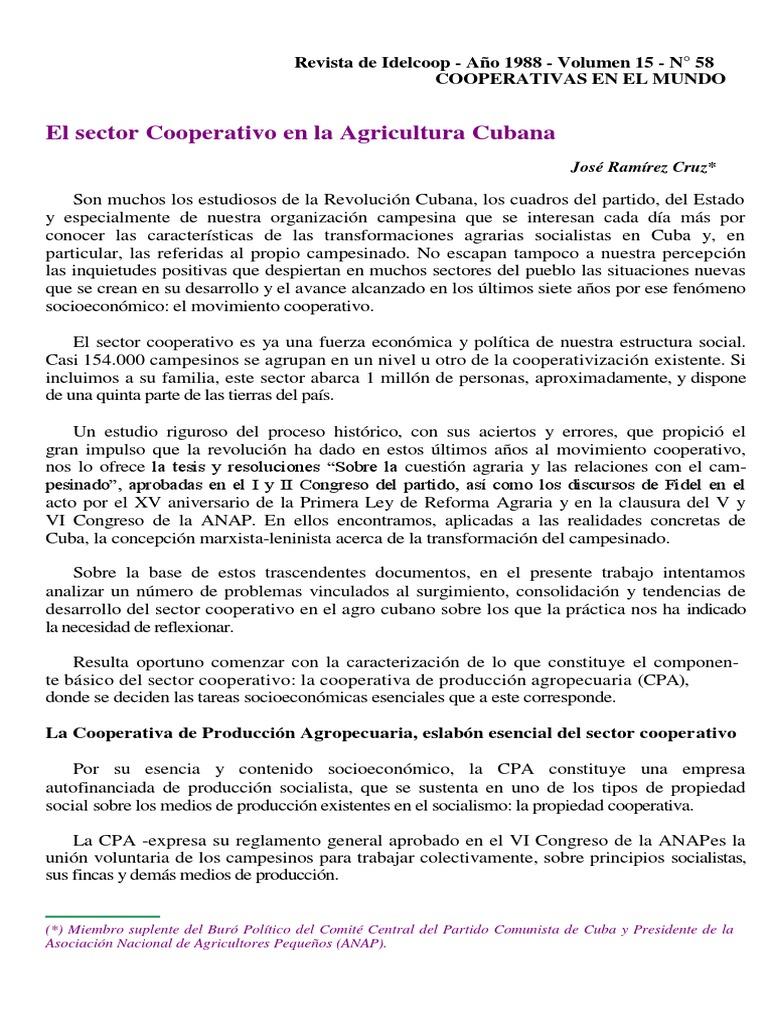 Cuba Reforma Cooperativismo