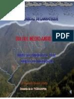 264183237-DIAPOSITIVAS-IMPACTO-AMBIENTAL.pdf