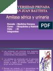 Amilasa Serica