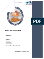 informe de proyeccion total.docx