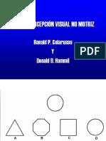 TPVNM    TEST DE PERCEPCIÓN NO VISUAL