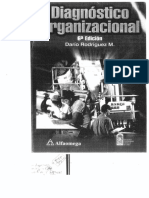 Diagnóstico Organizacional-D. Rodriguez