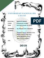 8 INFORME- JAR TEST (PRUEBA DE JARRAS).pdf