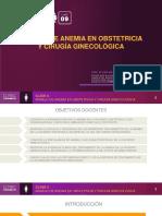 Curso01 Hierro Gineco Clase09 ESPANOL