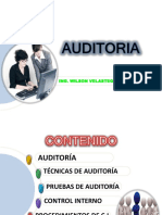conferenciaauditoriatocho-110110141456-phpapp02.pdf