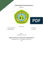Laporan Praktikum Parasitologi i