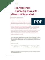Campo Algodoner CIDH-FEMI