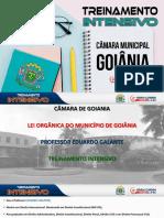 Lei Orgânica Goiânia - Camara Goiania - Treinamento Intensivo