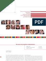 dictamen-eeff-2010-espanol.pdf