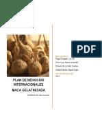 Plan de Negocios - Maca Gelatinizada